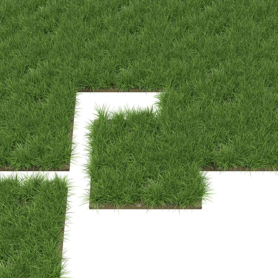 Grass Fields Collection 2 royalty-free 3d model - Preview no. 8