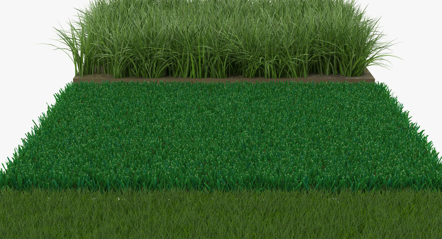 Grass Fields Collection 2 royalty-free 3d model - Preview no. 6