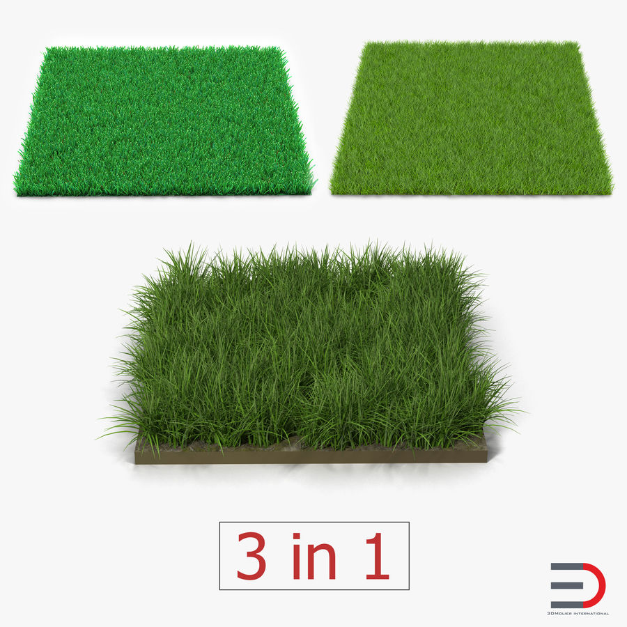 Grass Fields Collection 2 royalty-free 3d model - Preview no. 1