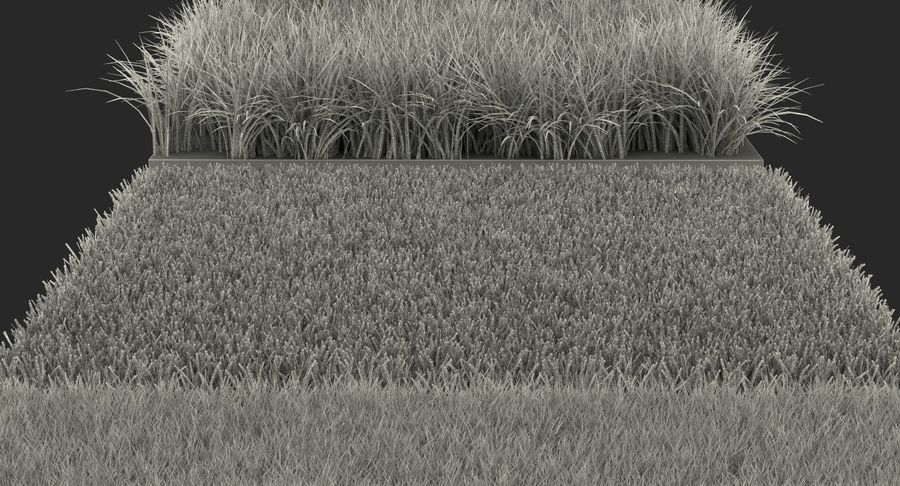 Grass Fields Collection 2 royalty-free 3d model - Preview no. 14