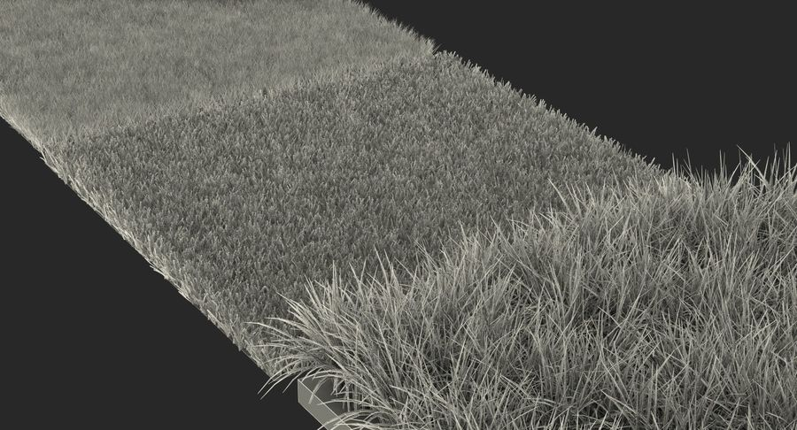 Grass Fields Collection 2 royalty-free 3d model - Preview no. 12