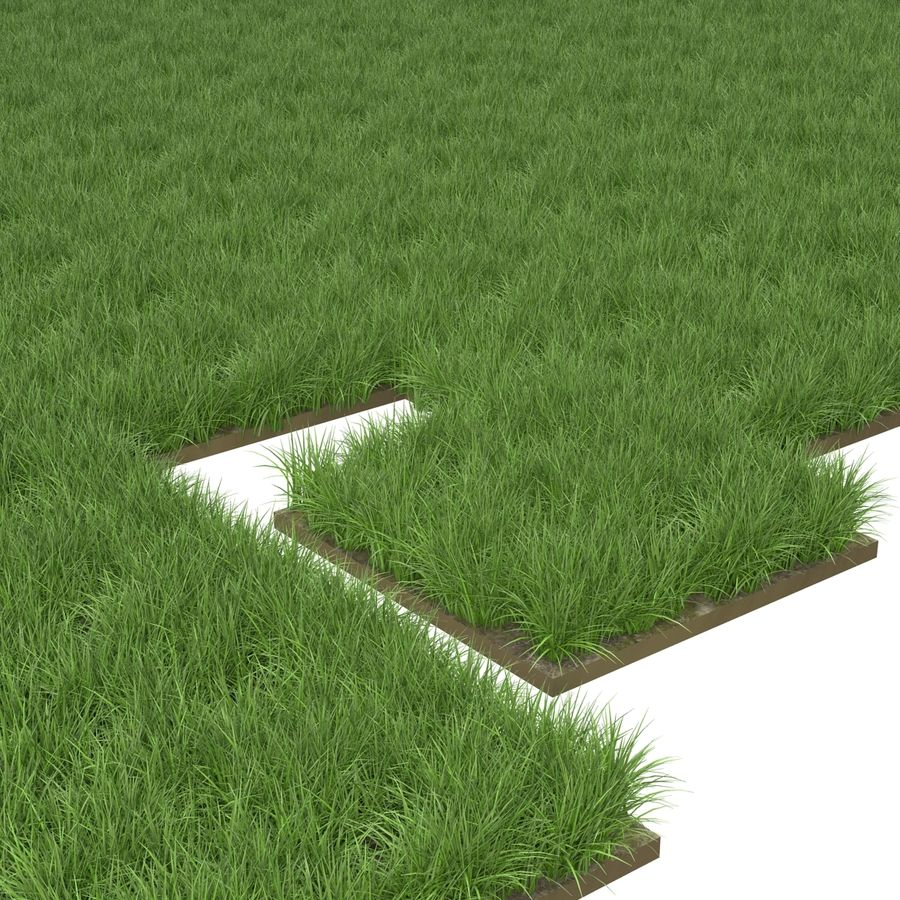 Grass Fields Collection 2 royalty-free 3d model - Preview no. 7