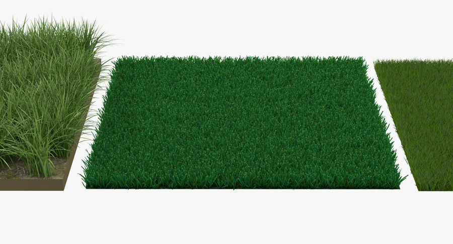 Grass Fields Collection 2 royalty-free 3d model - Preview no. 5
