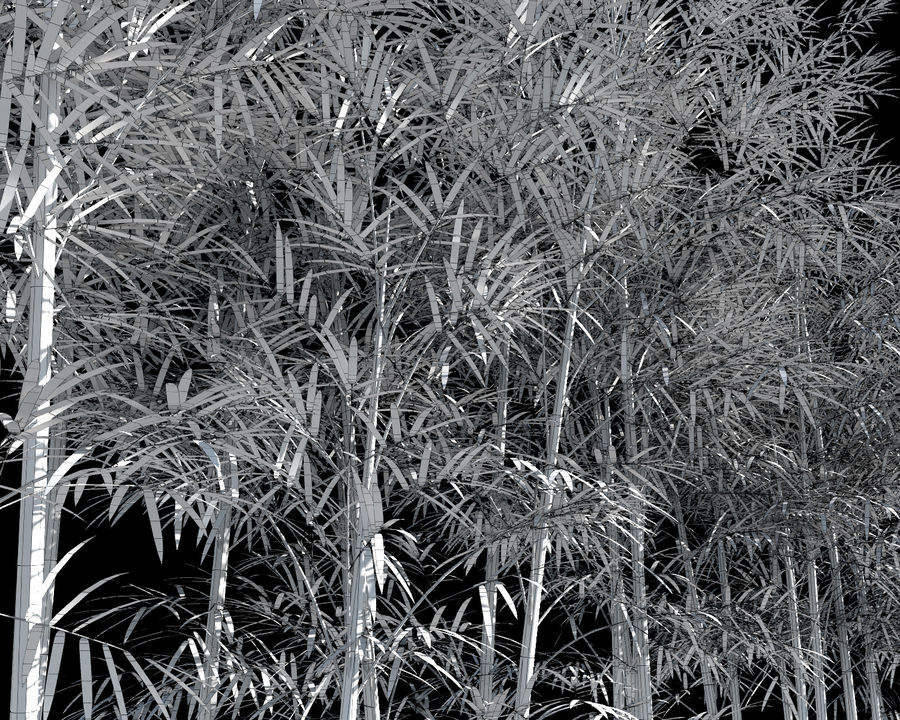 Bamboo Trees 4 (+ GrowFX) royalty-free modelo 3d - Preview no. 11