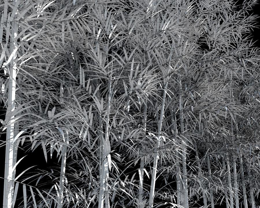 대나무 나무 4 (+ GrowFX) royalty-free 3d model - Preview no. 11