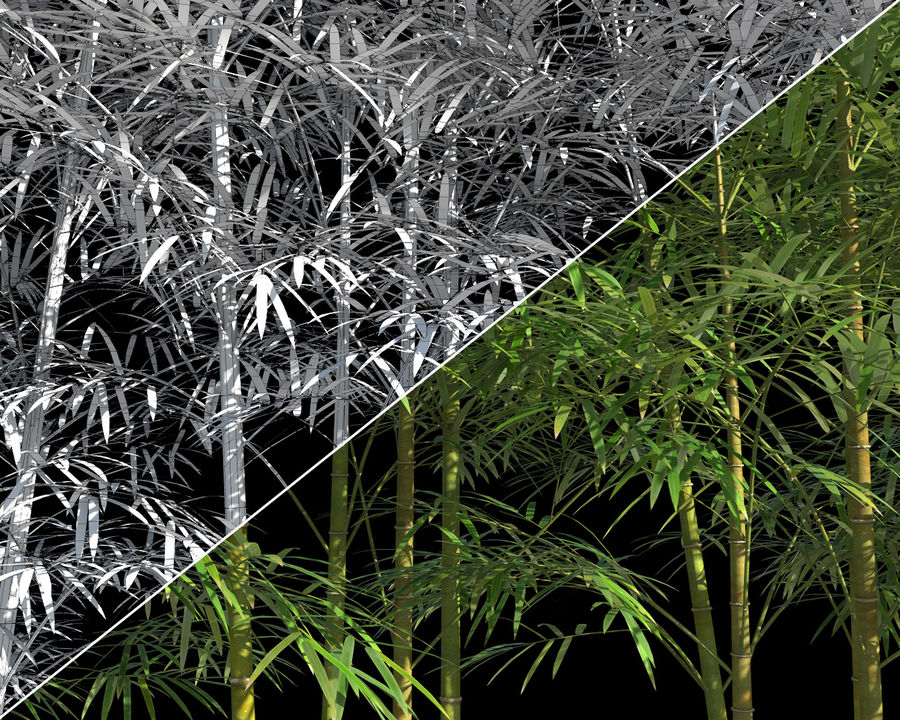 Bamboo Trees 4 (+ GrowFX) royalty-free modelo 3d - Preview no. 10