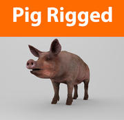 uzbrojony w świnię 3d model