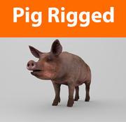 cerdo aparejado modelo 3d