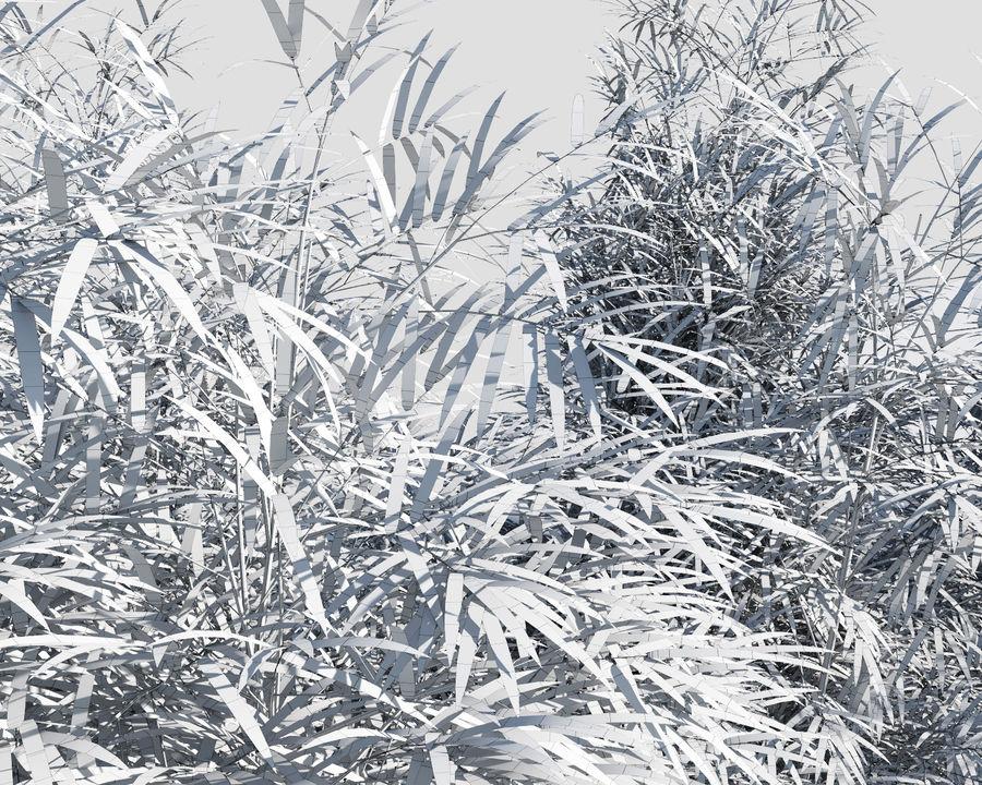 Árvores de bambu 3 (+ GrowFX) royalty-free 3d model - Preview no. 11