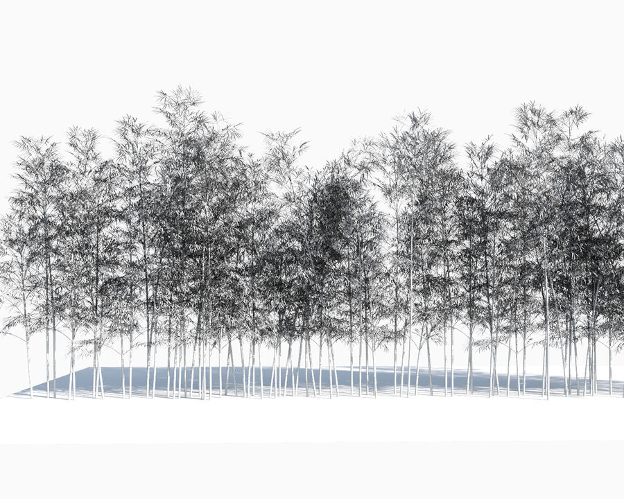 Árvores de bambu 3 (+ GrowFX) royalty-free 3d model - Preview no. 14