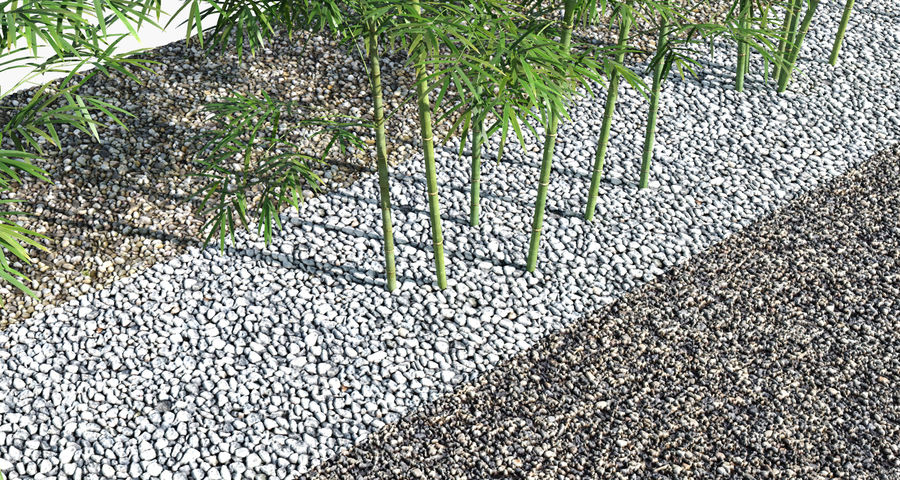 Árvores de bambu 3 (+ GrowFX) royalty-free 3d model - Preview no. 5