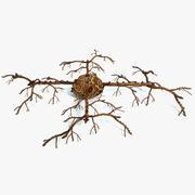 ファンタジー植物1 3d model