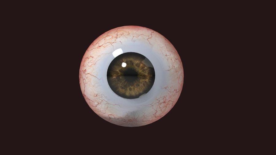 Realistic Human Eye royalty-free 3d model - Preview no. 1