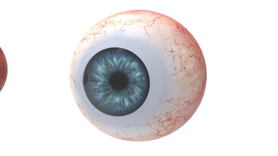 Realistic Human Eye royalty-free 3d model - Preview no. 5