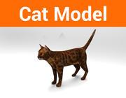 modello di gatto 3d model