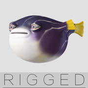 cartoon pruffer fishes rigged 3d model