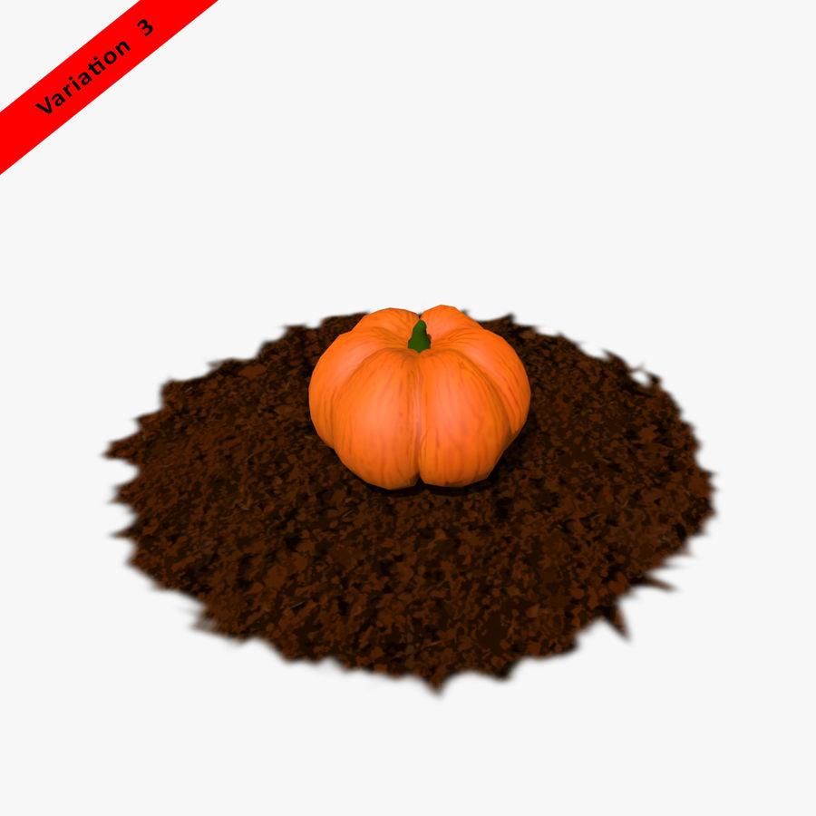 Pumpkin Plant royalty-free 3d model - Preview no. 13