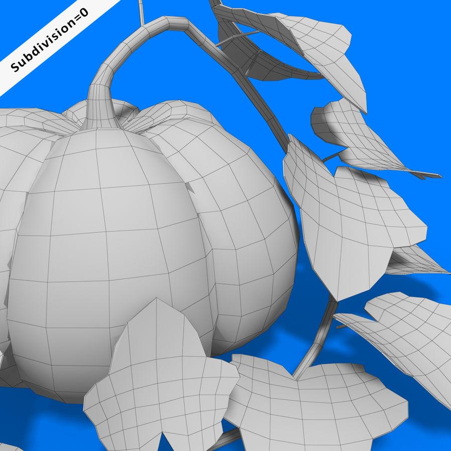 Pumpkin Plant royalty-free 3d model - Preview no. 9