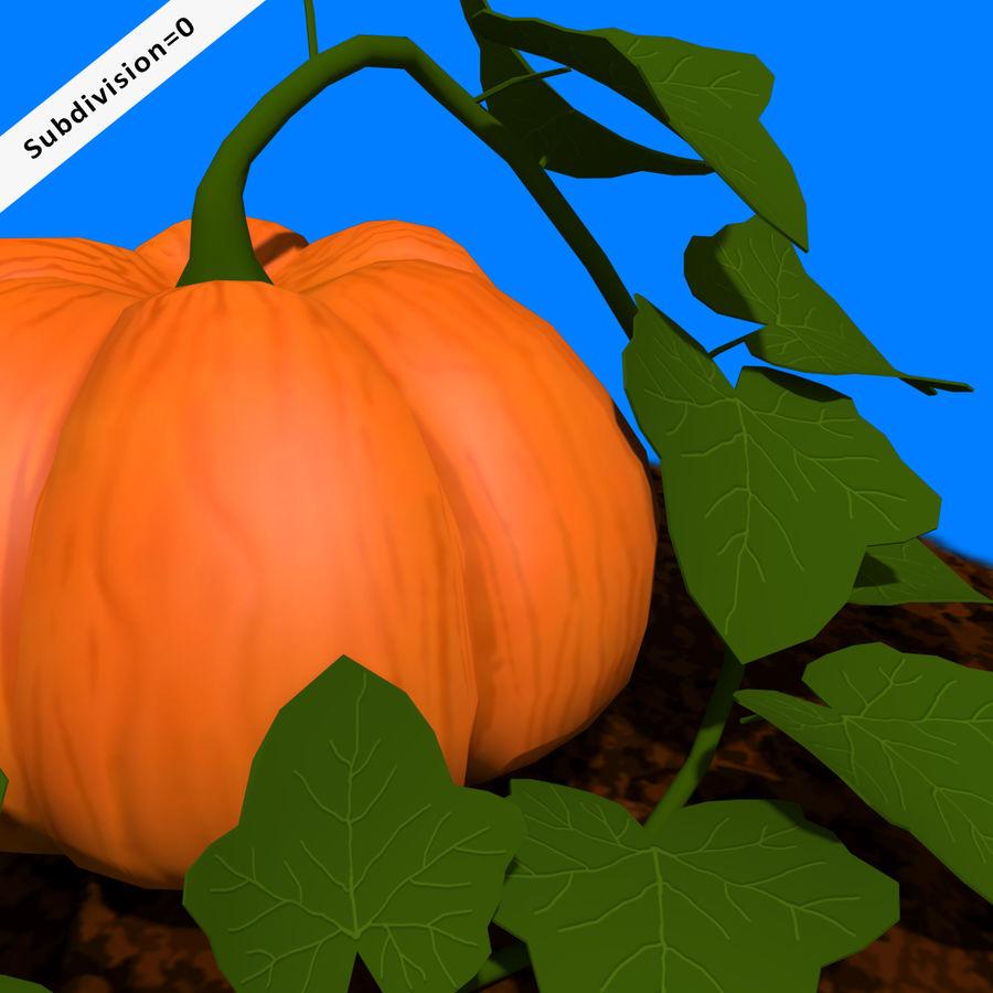 Pumpkin Plant royalty-free 3d model - Preview no. 4
