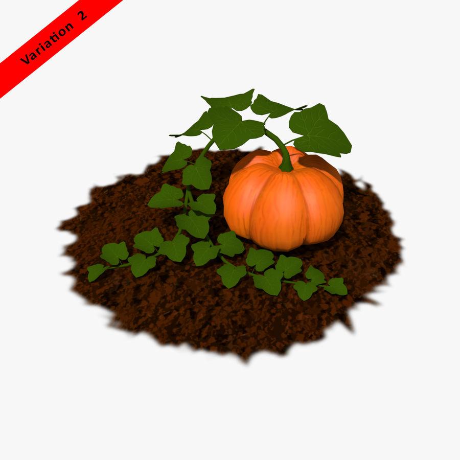 Pumpkin Plant royalty-free 3d model - Preview no. 11