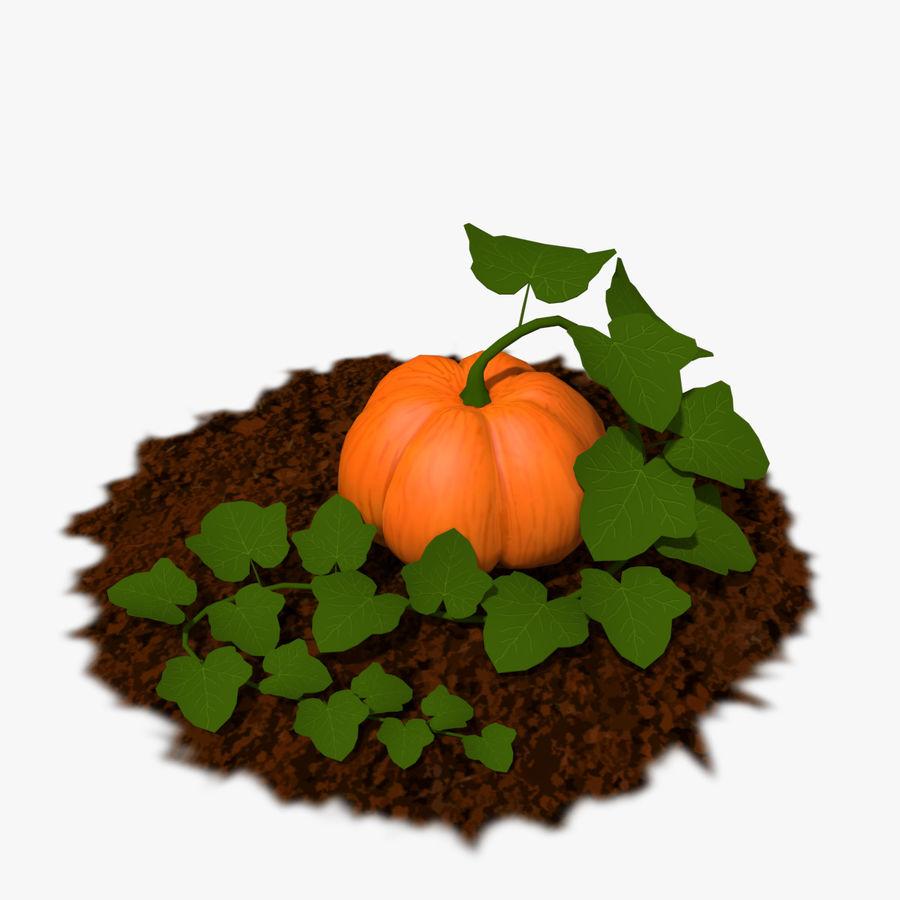 Pumpkin Plant royalty-free 3d model - Preview no. 1