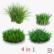 Grass Collection 3d model