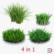 草のコレクション 3d model
