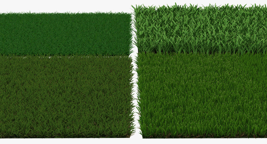 Grass Fields 3D Models Collection 3 royalty-free 3d model - Preview no. 9