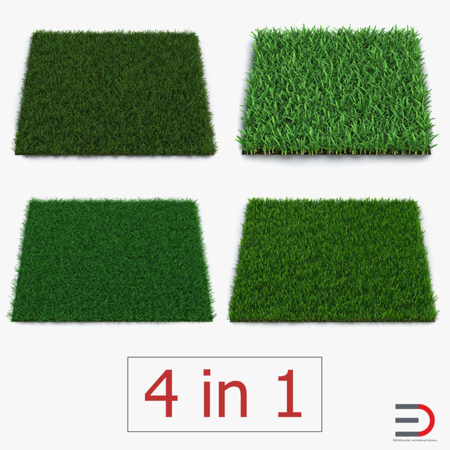 Grass Fields 3D Models Collection 3 royalty-free 3d model - Preview no. 1