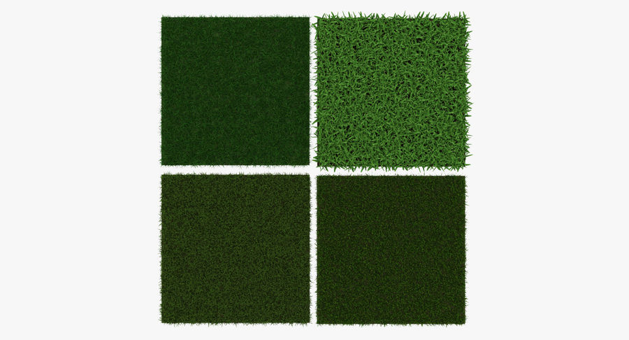 Grass Fields 3D Models Collection 3 royalty-free 3d model - Preview no. 6