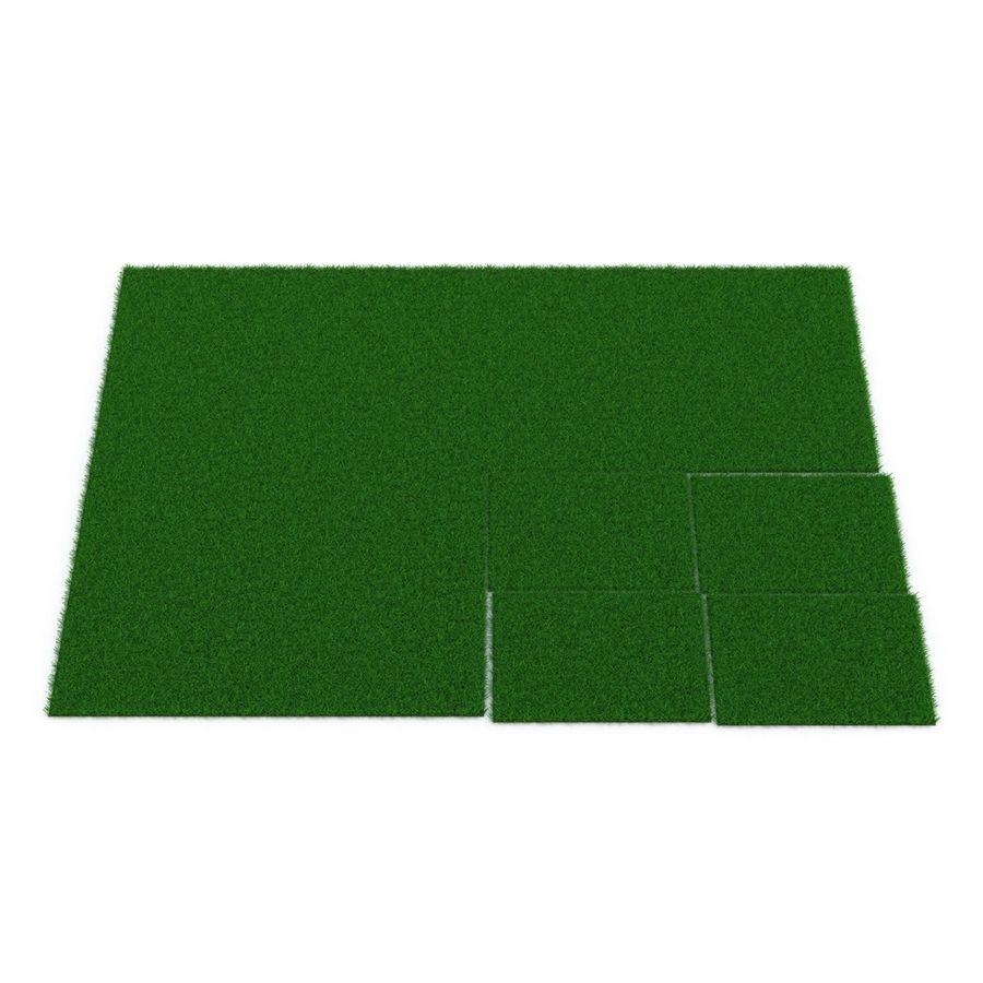 Grass Fields 3D Models Collection 3 royalty-free 3d model - Preview no. 14