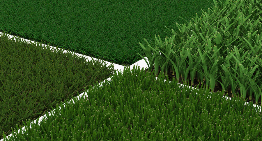 Grass Fields 3D Models Collection 3 royalty-free 3d model - Preview no. 8