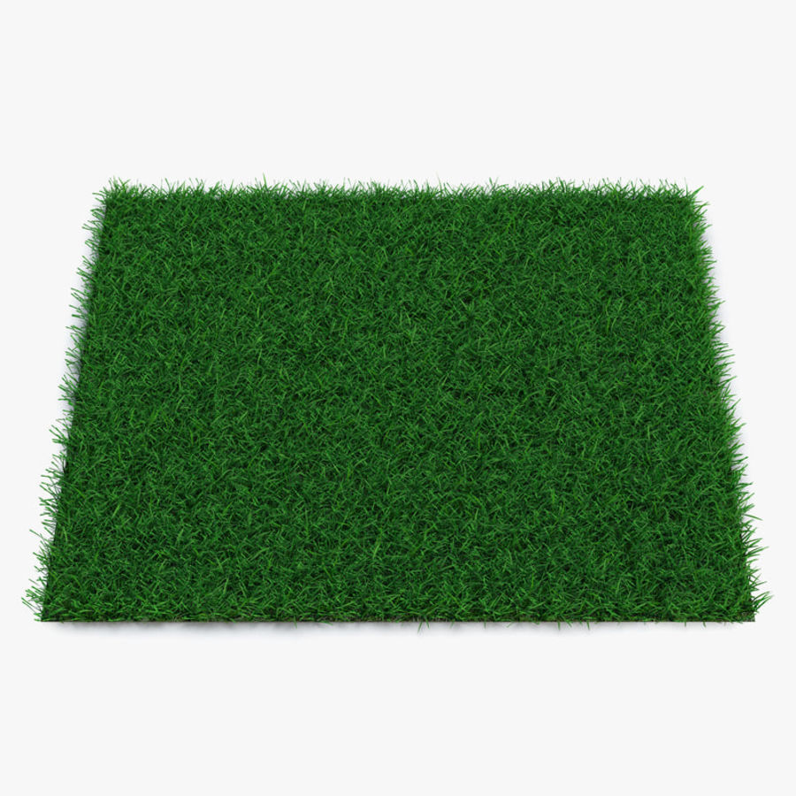 Grass Fields 3D Models Collection 3 royalty-free 3d model - Preview no. 5