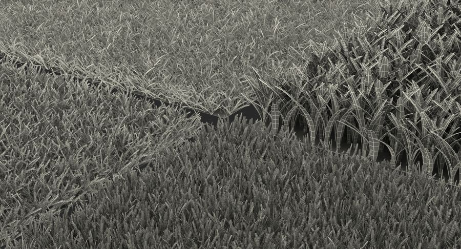 Grass Fields 3D Models Collection 3 royalty-free 3d model - Preview no. 17