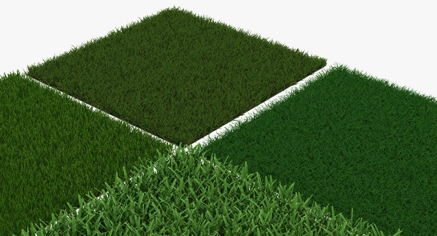 Grass Fields 3D Models Collection 3 royalty-free 3d model - Preview no. 7