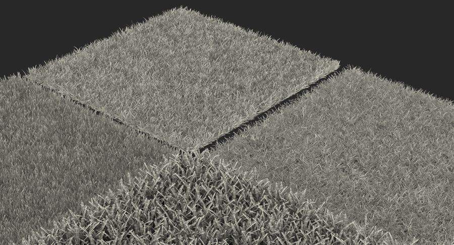 Grass Fields 3D Models Collection 3 royalty-free 3d model - Preview no. 18