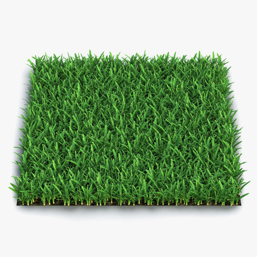 Grass Fields 3D Models Collection 3 royalty-free 3d model - Preview no. 3