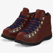 Boots Danner 2 3d model