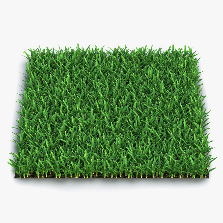 Grass Fields Collection royalty-free 3d model - Preview no. 5