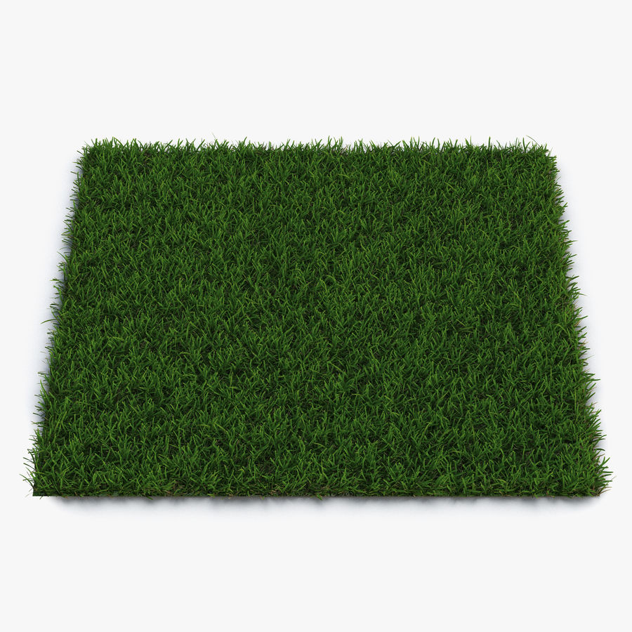 Grass Fields Collection royalty-free 3d model - Preview no. 6