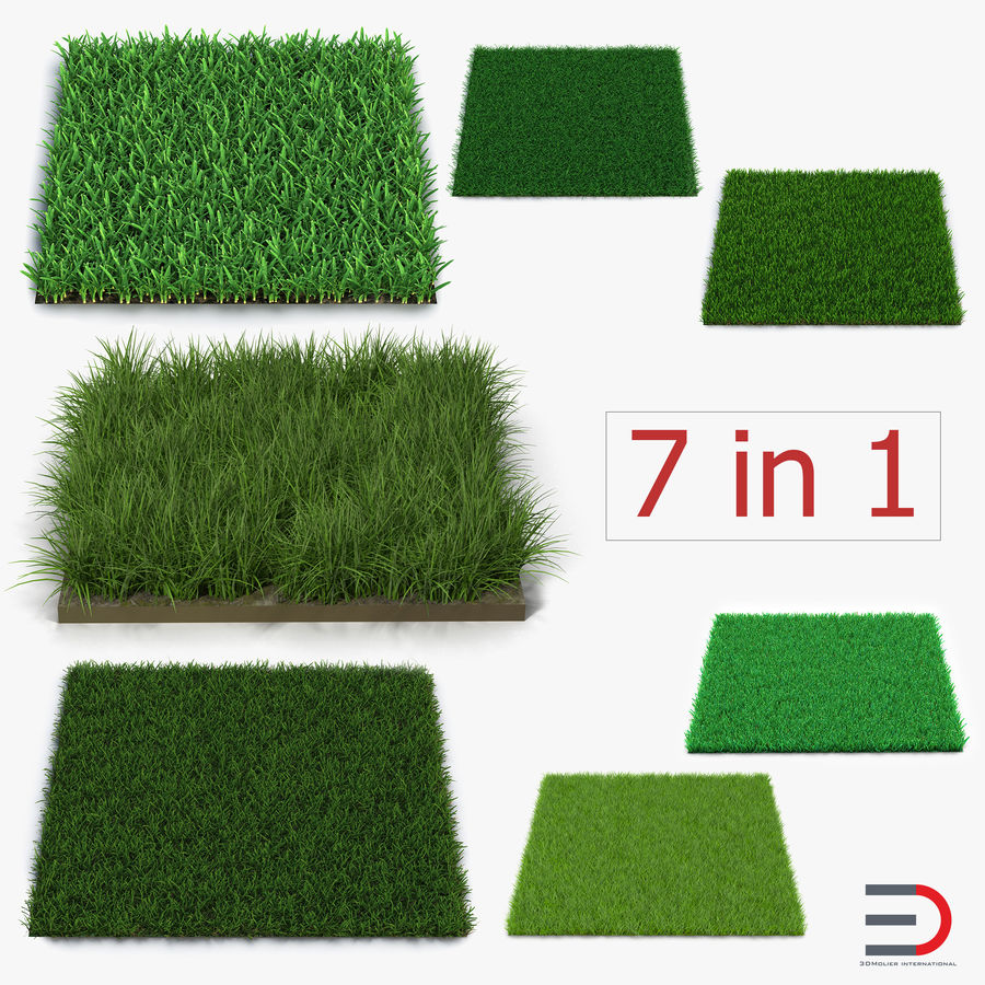 Grass Fields Collection royalty-free 3d model - Preview no. 1