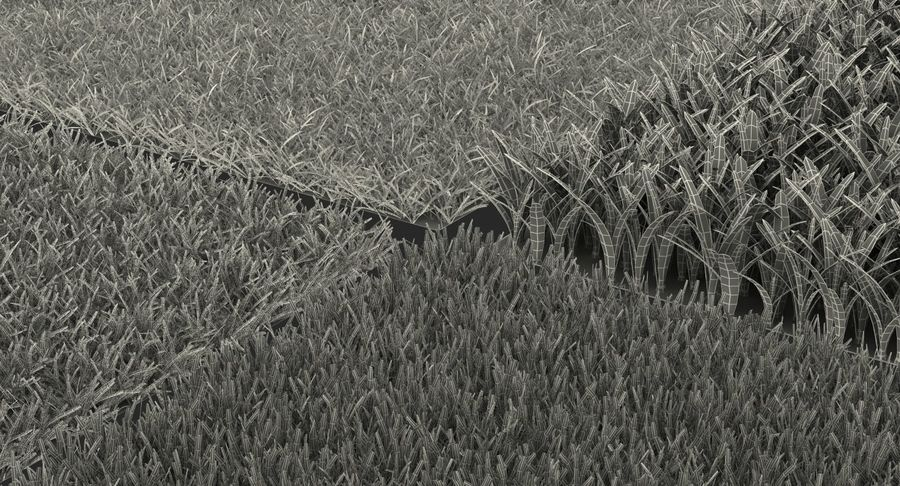 Grass Fields Collection royalty-free 3d model - Preview no. 26