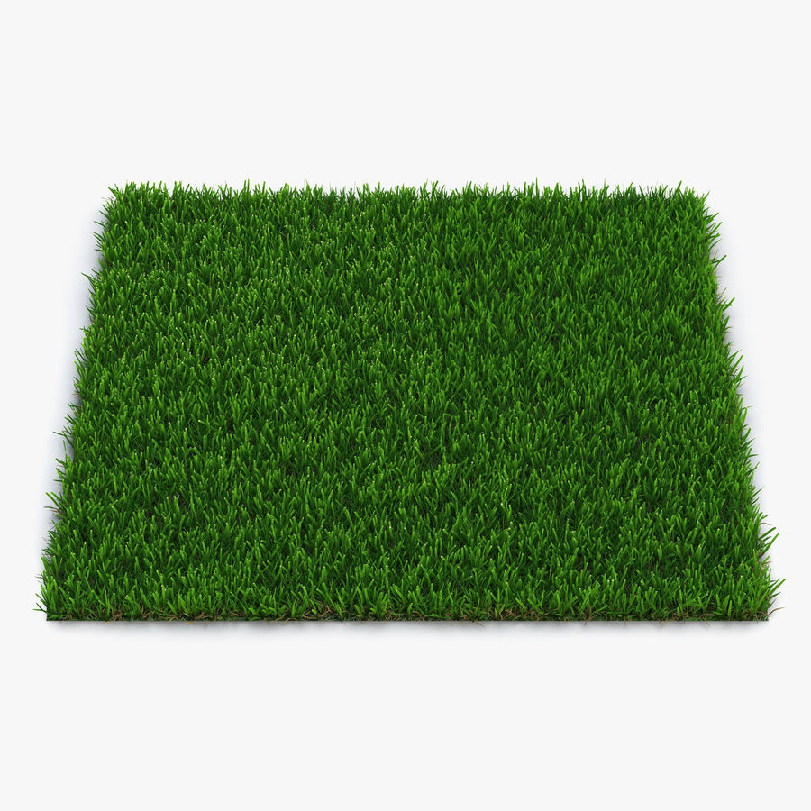 Grass Fields Collection royalty-free 3d model - Preview no. 3