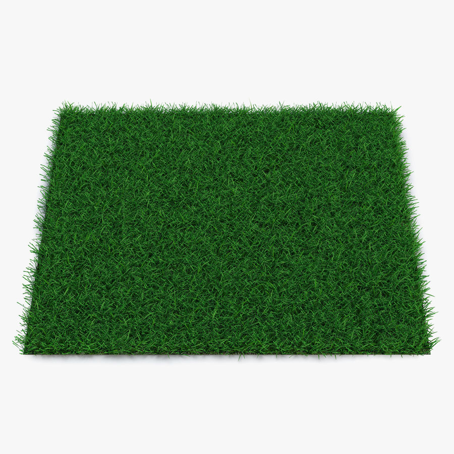 Grass Fields Collection royalty-free 3d model - Preview no. 8