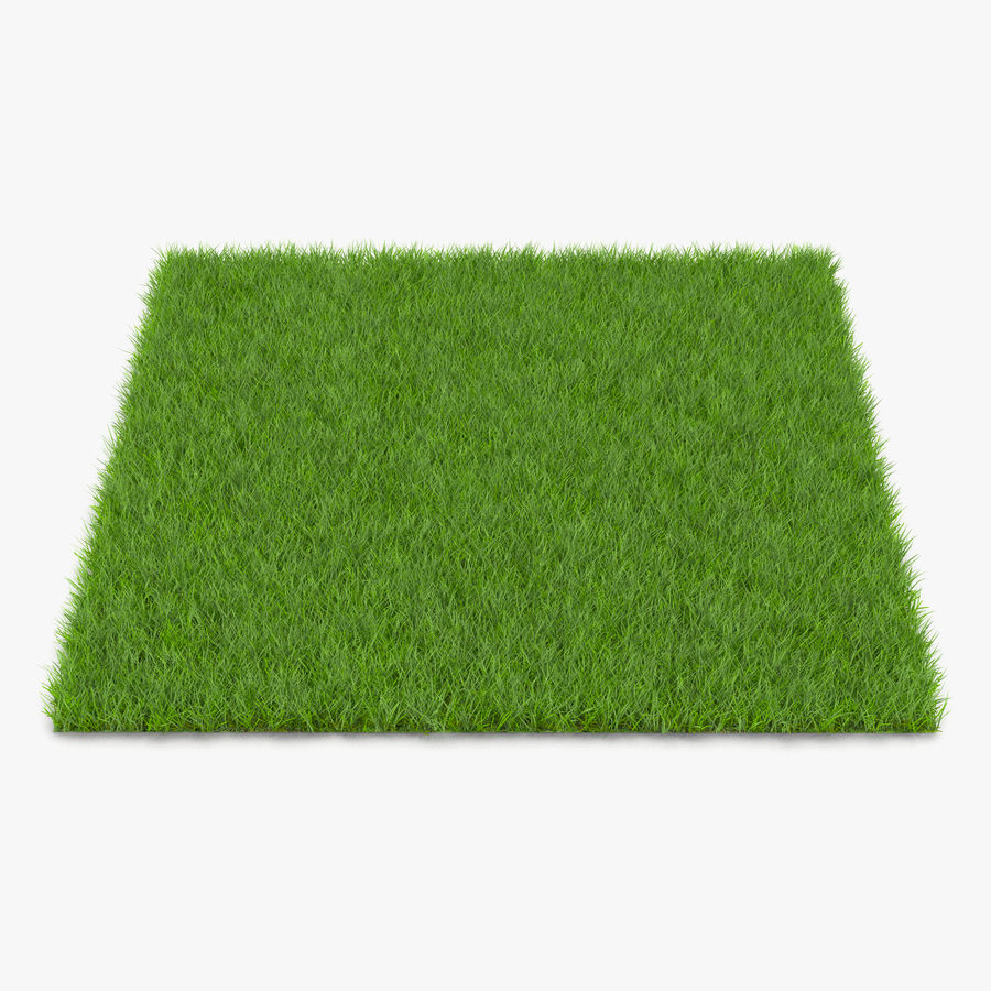 Grass Fields Collection royalty-free 3d model - Preview no. 4