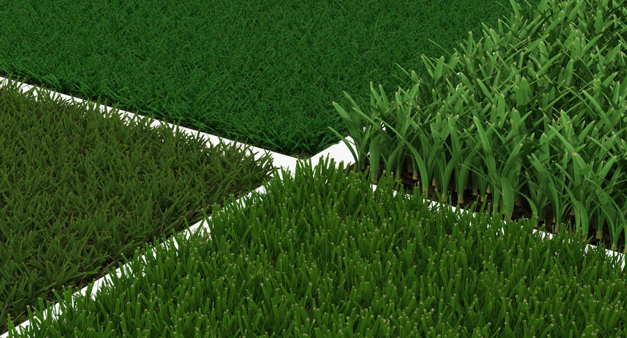 Grass Fields Collection royalty-free 3d model - Preview no. 12