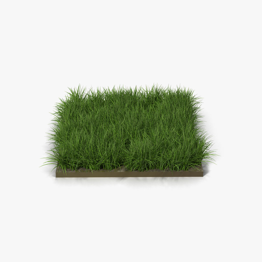Grass Fields Collection royalty-free 3d model - Preview no. 2