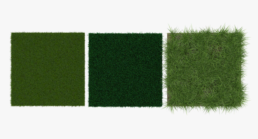 Grass Fields Collection royalty-free 3d model - Preview no. 10