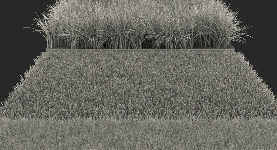 Grass Fields Collection royalty-free 3d model - Preview no. 29