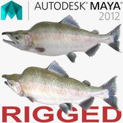 Rosa Lachs manipuliert für Maya 3d model